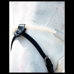Noseband 1/2 Dy'on