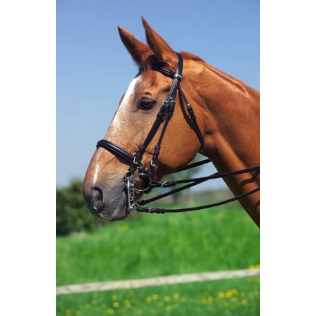 Bride Eric Thomas large