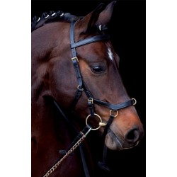 Bridon Horseware Micklem original